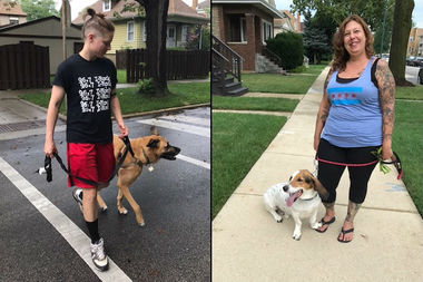 Founded in 2007, Snappy Paws now employs 13 walkers for its roster of 170 dogs.