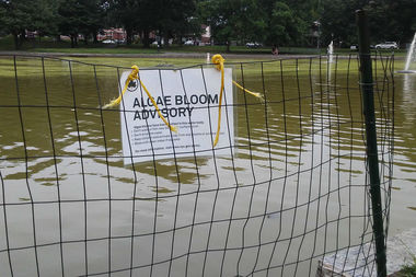 The Parks Department issued an Algae Bloom Advisory because of bacteria found at Bowne Pond Park.