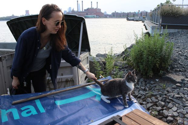 Angela Velasquez is hoping Greenpoint's threatened feral cats might find a permanent home in Bushwick Inlet Park.
