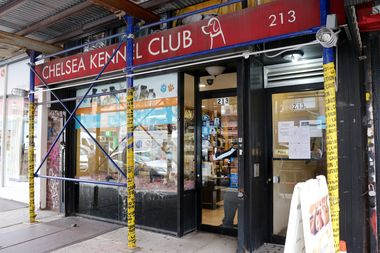 The Chelsea Kennel Club at 213 Seventh Ave., near West 22nd Street.