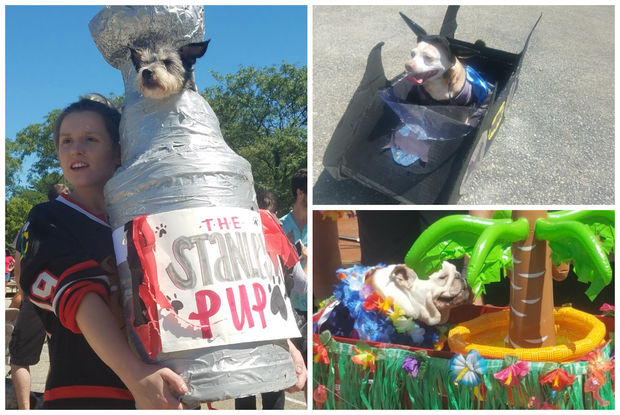 Photos from the West Town dog parade.