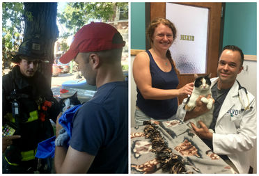 Dylan Frederick, the veterinarian at Boulevard Veterinary, 2740 W. Armitage Ave., happened to be on the scene of Saturday's fire, where he helped save a cat's life (left). The cat was later reunited with her owner (right).