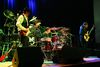 Stevie Ray Vaughan Cover Band To Give Free Concert At Buena Circle Park