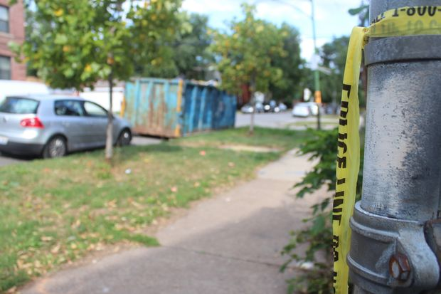 Laquesha Holmes, 33, was shot to death in Logan Square on Wednesday, officials said.