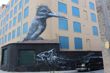 This mural by internationally known street artist ROA is on the back corner of a storage building at Armitage and Mendell.
