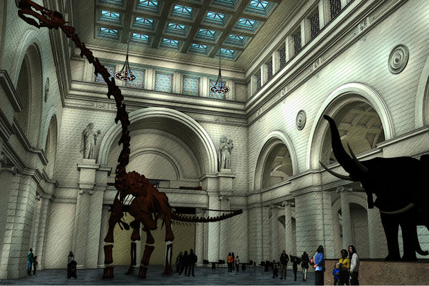 The Field Museum will raise admission next year before the debut of its new titanosaur cast coming to the entrance hall.