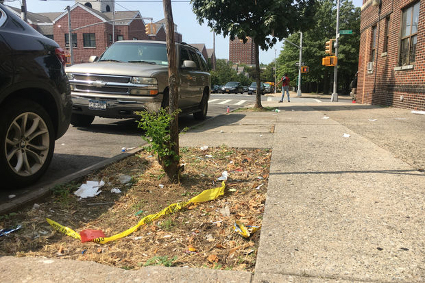 The young woman was shot on the street near her home at Dean Street and Howard Avenue about 12:40 p.m. Sunday, NYPD officials said Monday morning.