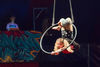 Midnight Circus Returns To Oriole Park For Benefit Shows This Weekend
