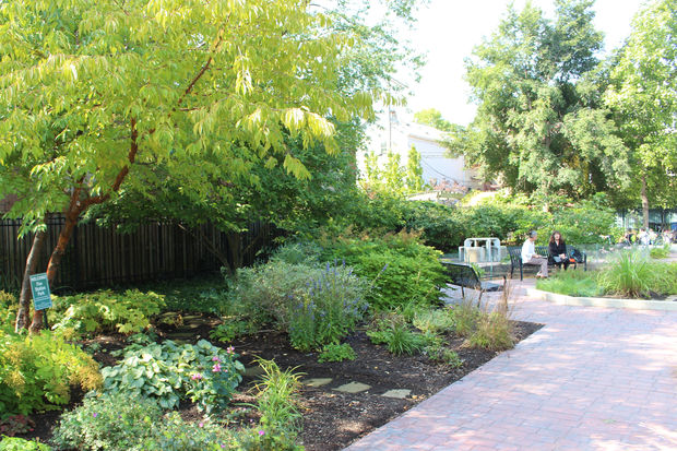 Fire Station Park Will Receive A Chicago Excellence In Gardening Award This  Weekend.